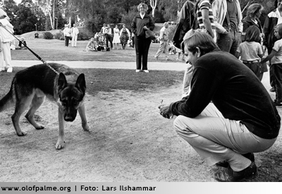 Någon ville att Palme skulle klappa en schäfer från Statens hundskola.